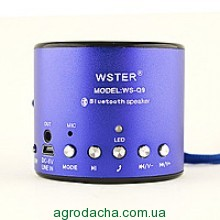 Колонка Bluetooth WSTER WS-Q9
