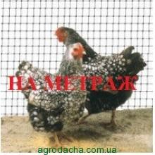 Сетка вольерная для птиц Украина черная 1,5м