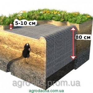 Сетка от кротов Украина черная 0.50м*100м