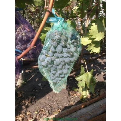 защиты кистей винограда,защитная сетка для винограда 28х40,Сетка-мешок,Сетка-мешок на виноград,защитная сетка для винограда 28х40,
