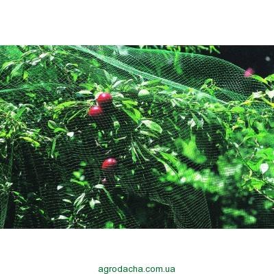 """Защитная сетка от птиц Венгрия """"Intermas"""" зеленая 4м*100м, Винница"""